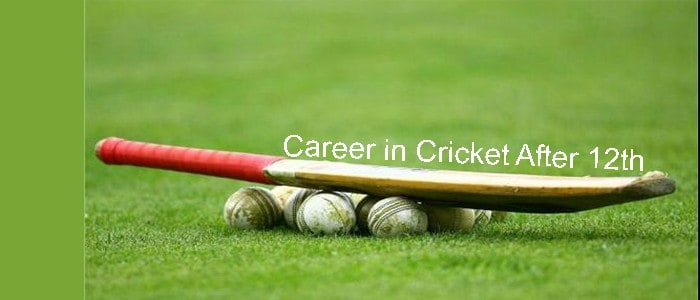 Career in Cricket After 12th