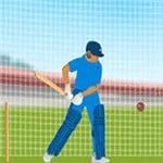 Lots of cricket practice