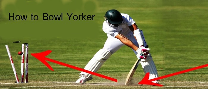 How to Bowl Yorker