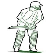 cricket stance